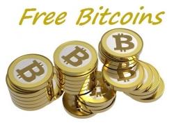 Bitcoin Martingale Experiment
